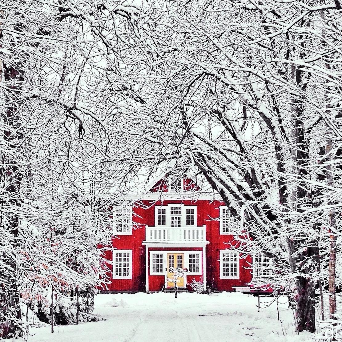 2019 year look- Wonderland Winter tumblr pictures